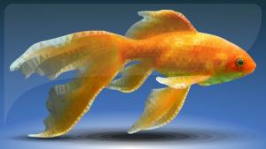 Akwarium wyposażone w dobrą grzałkę